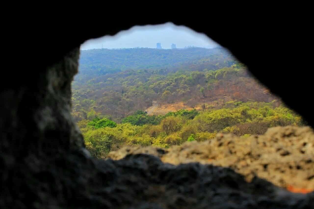 Sanjay Gandhi National park - Mumbai Maharashtra - things to do in Mumbai