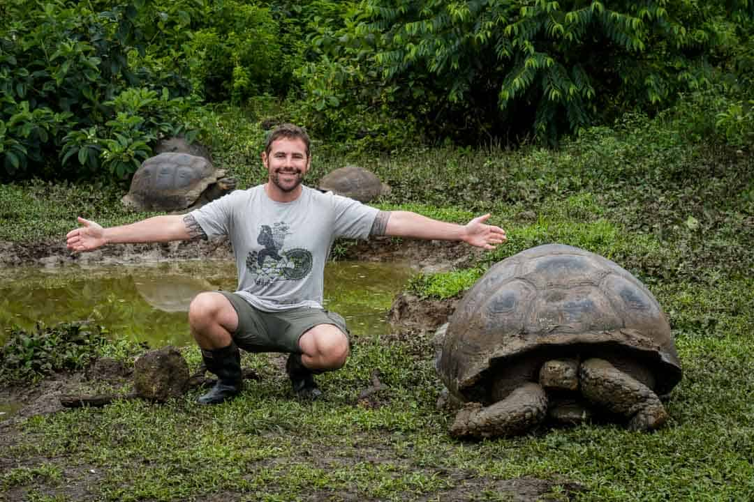 Giant Tortoise Galapagos Islands Pictures