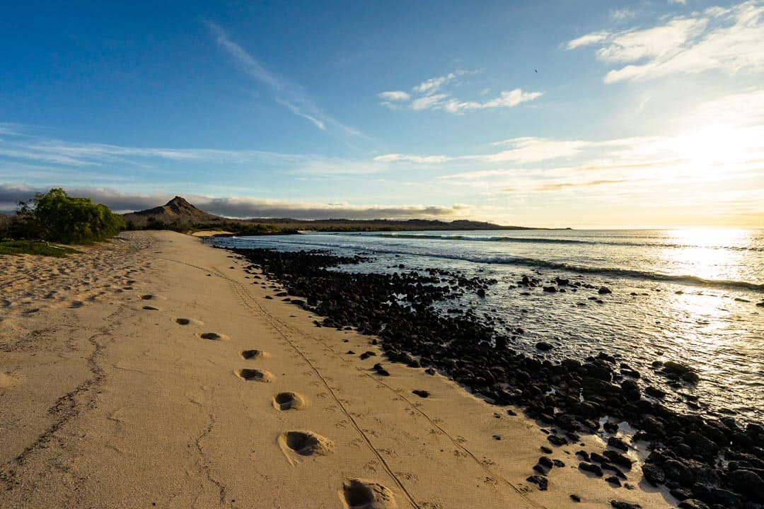 Tracks Galapagos Islands Pictures