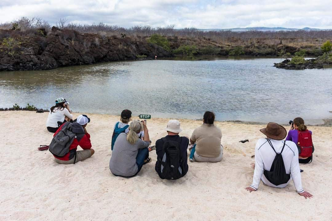 Excursions Letty Galapagos Islands Ecoventura Itinerary B Review