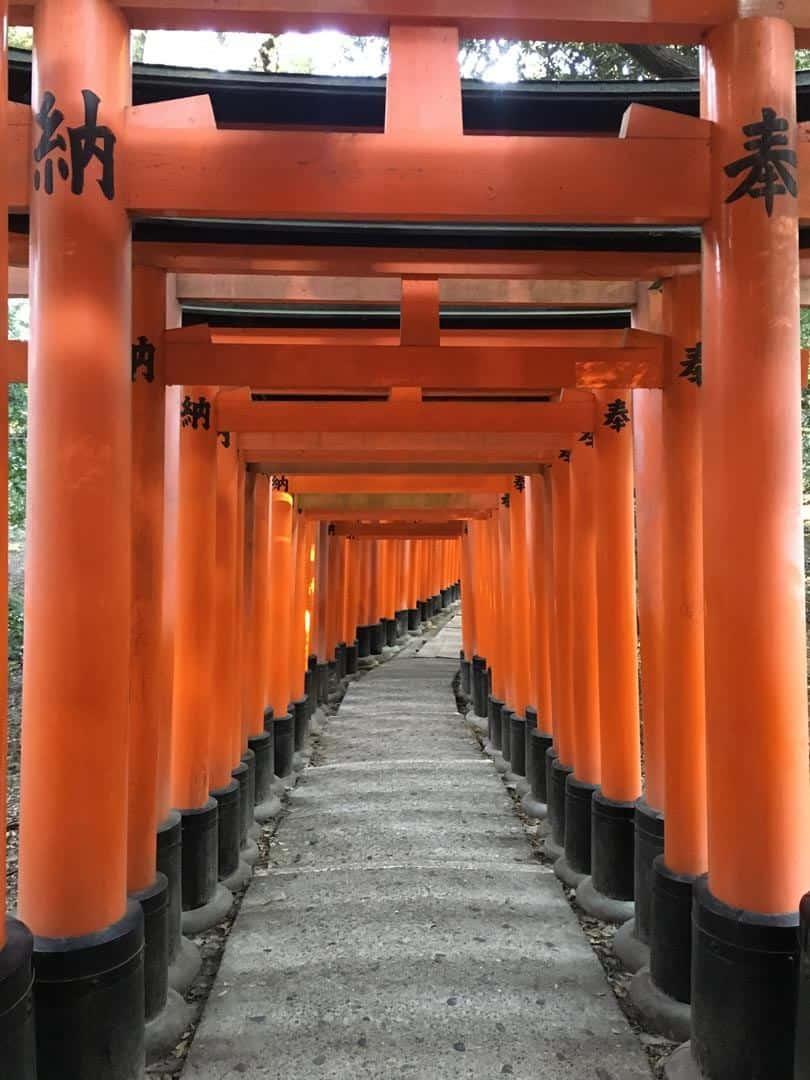 Inari Shrine Kyoto Budget Travel In Japan
