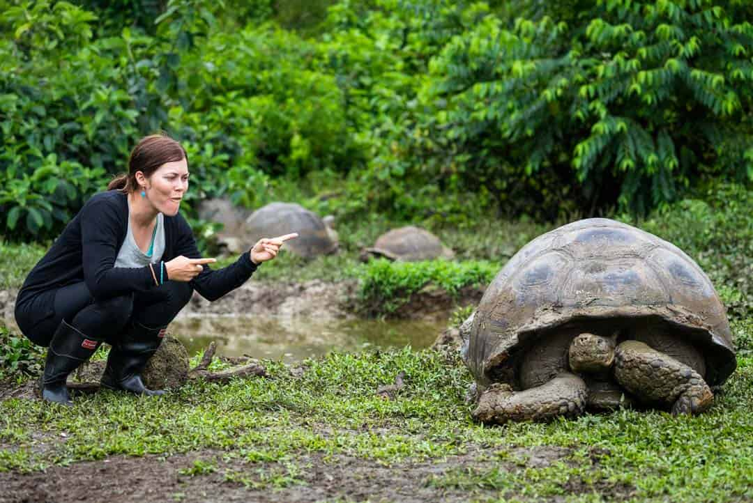 Lesh Giant Tortoise Letty Galapagos Islands Ecoventura Itinerary B Review