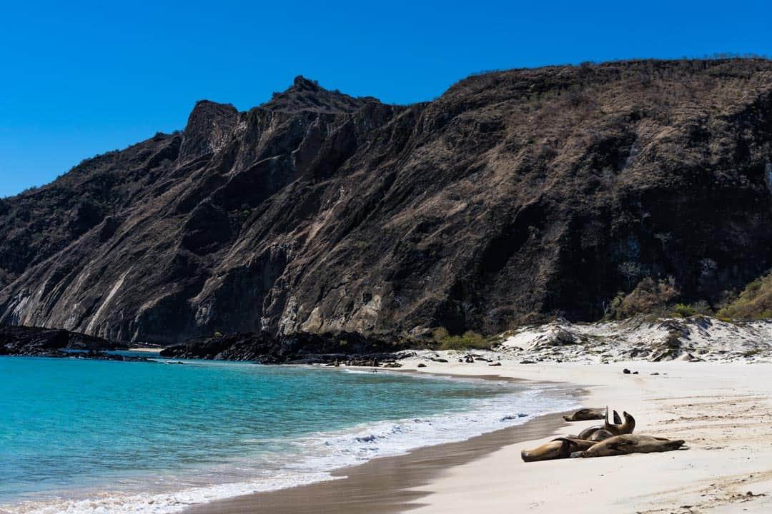 San Cristobal Beach Ecoventura Itinerary A Review Origin Galapagos Islands