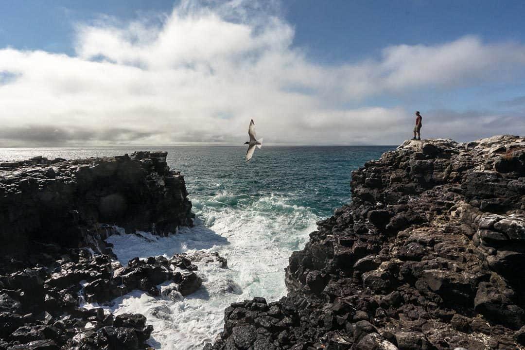 Española Ecoventura Itinerary A Review Origin Galapagos Islands