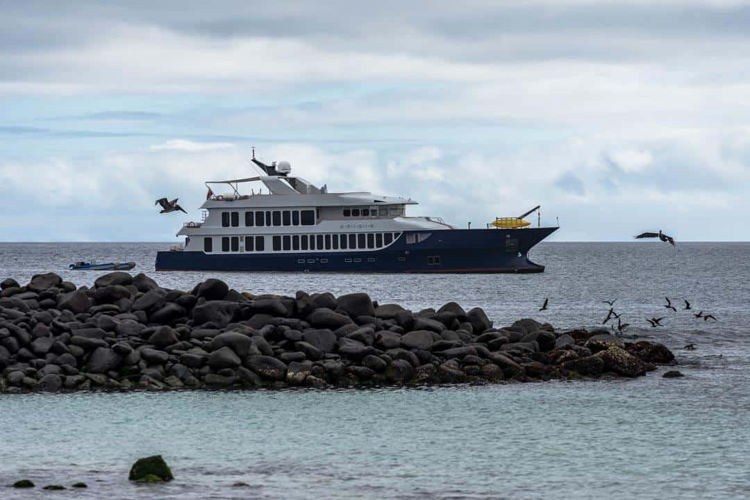 Mv Origin Ecoventura Itinerary A Review Origin Galapagos Islands