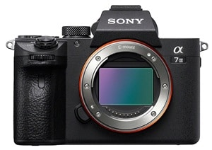 Sony A7iii Best Travel Camera For Professionals