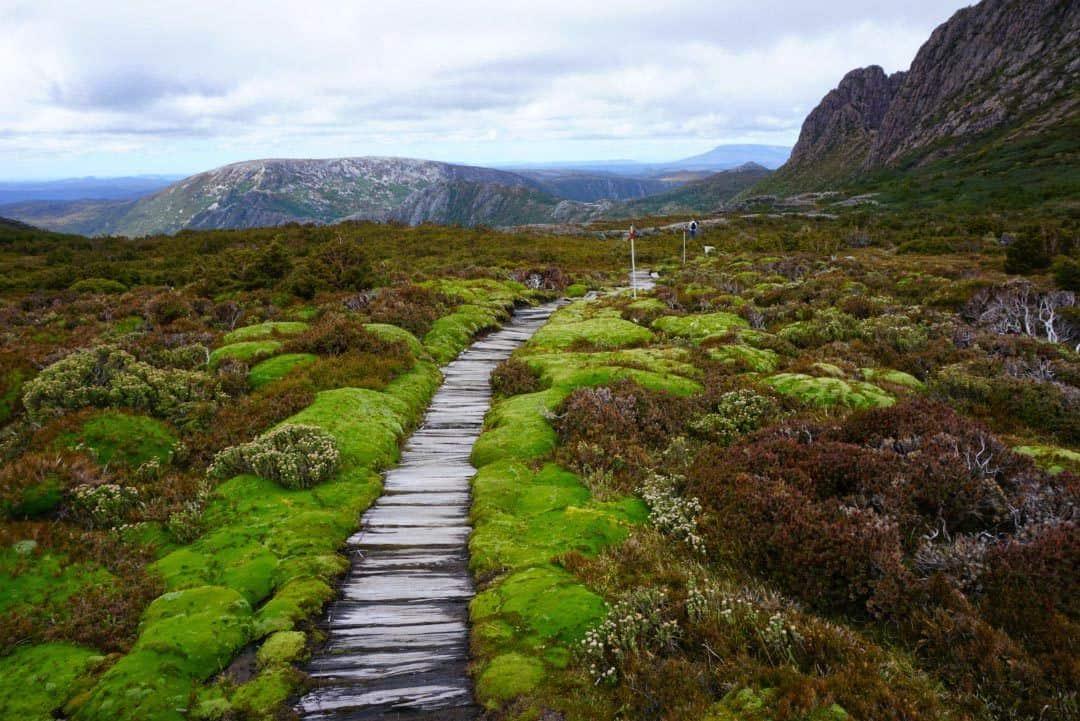 Cradle Mountain hike
