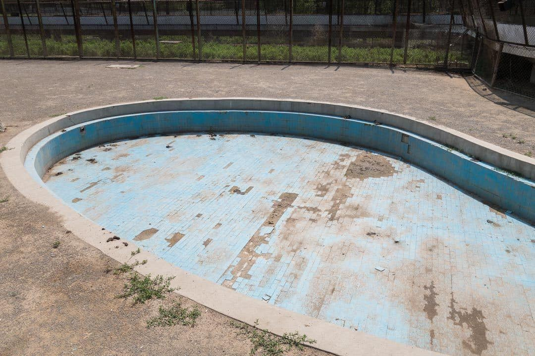 Pool Tiger Park