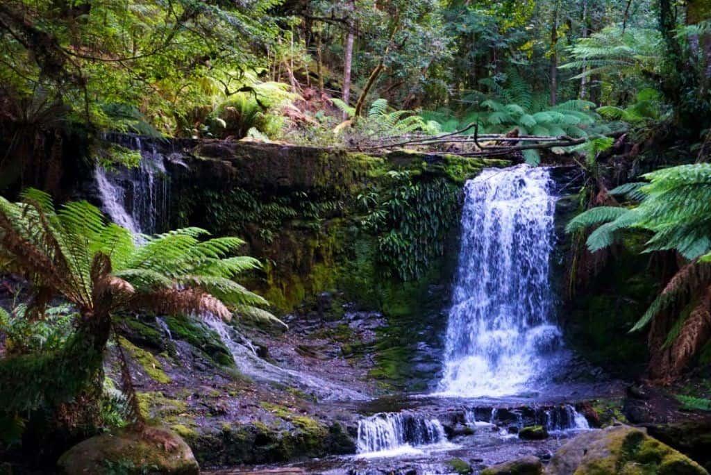 Mt Field National Park Tasmania