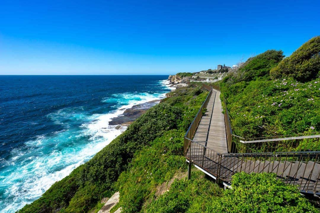 Bondi To Coogee Walk backpacking Sydney