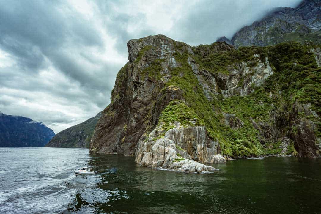Jagged Cliffs Milford Sound Overnight Cruise