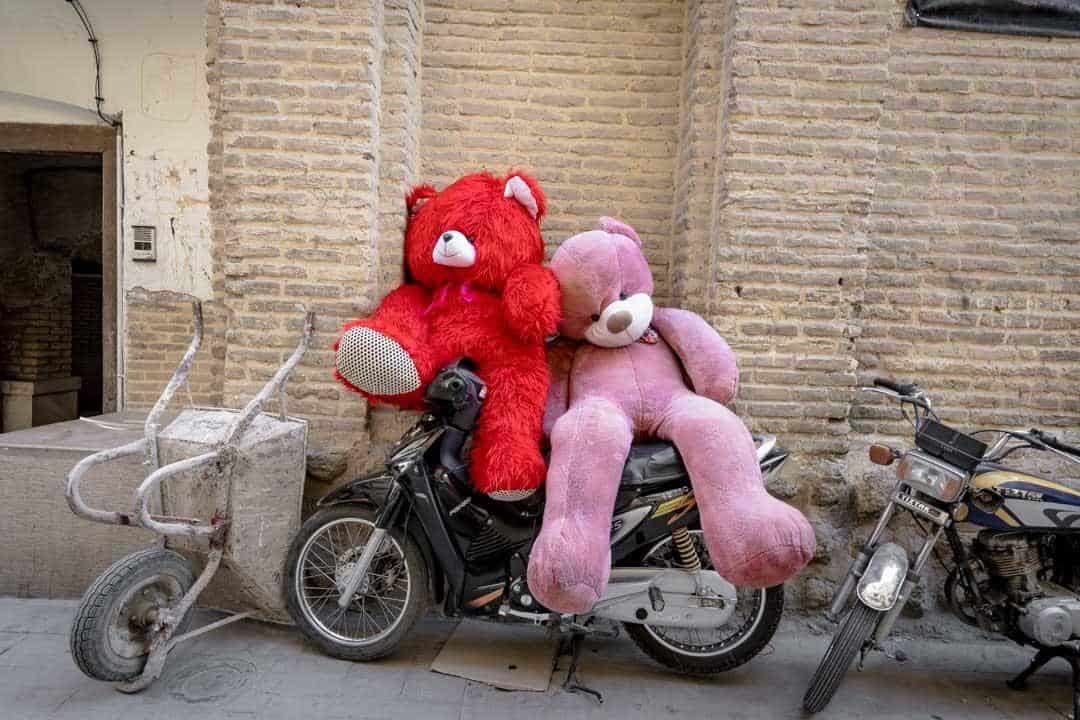 Teddy Bears Shiraz Iran