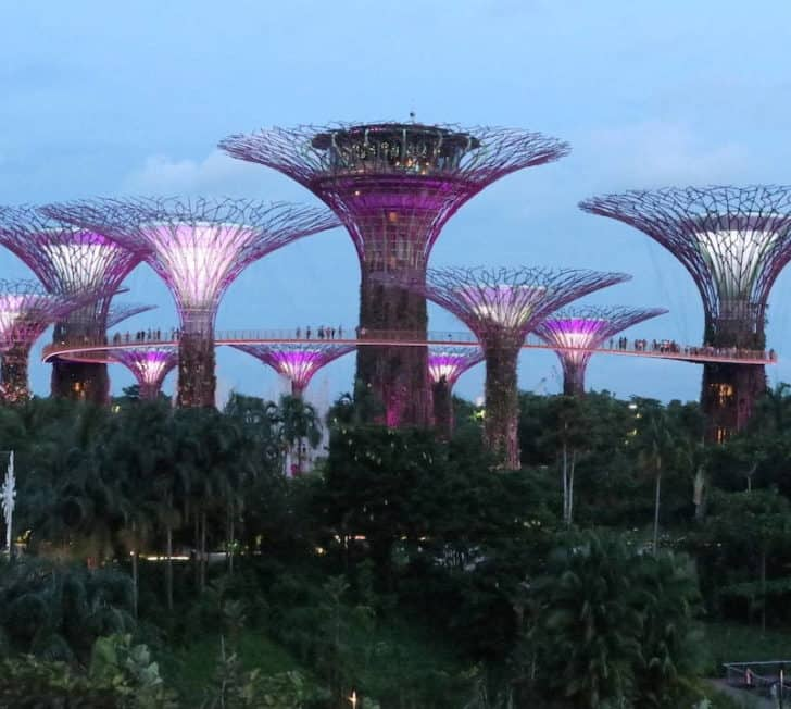 The Perfect Itinerary for 2 Days in Singapore