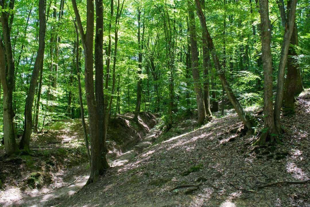 Fruska Gora Trail Day Hikes In The Balkans