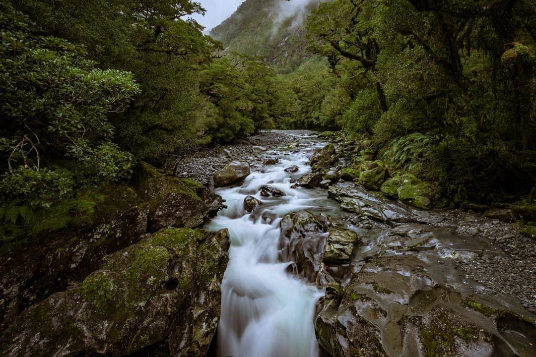 The Chasm Milford Sound