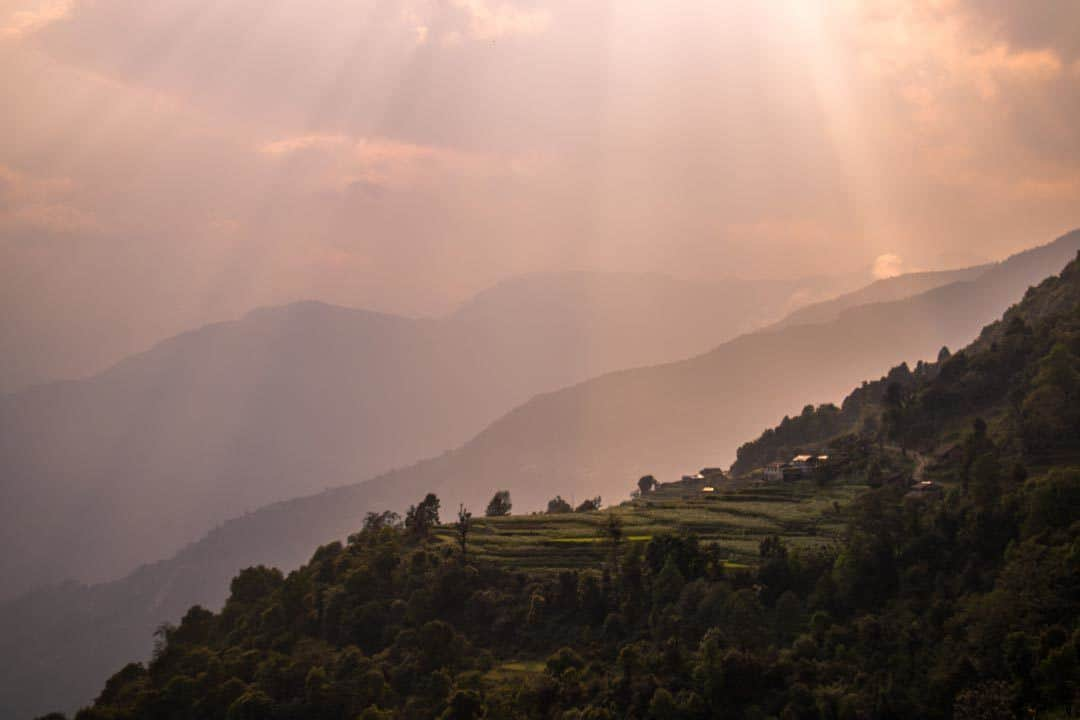 Rice Terraces Sunset Nepal