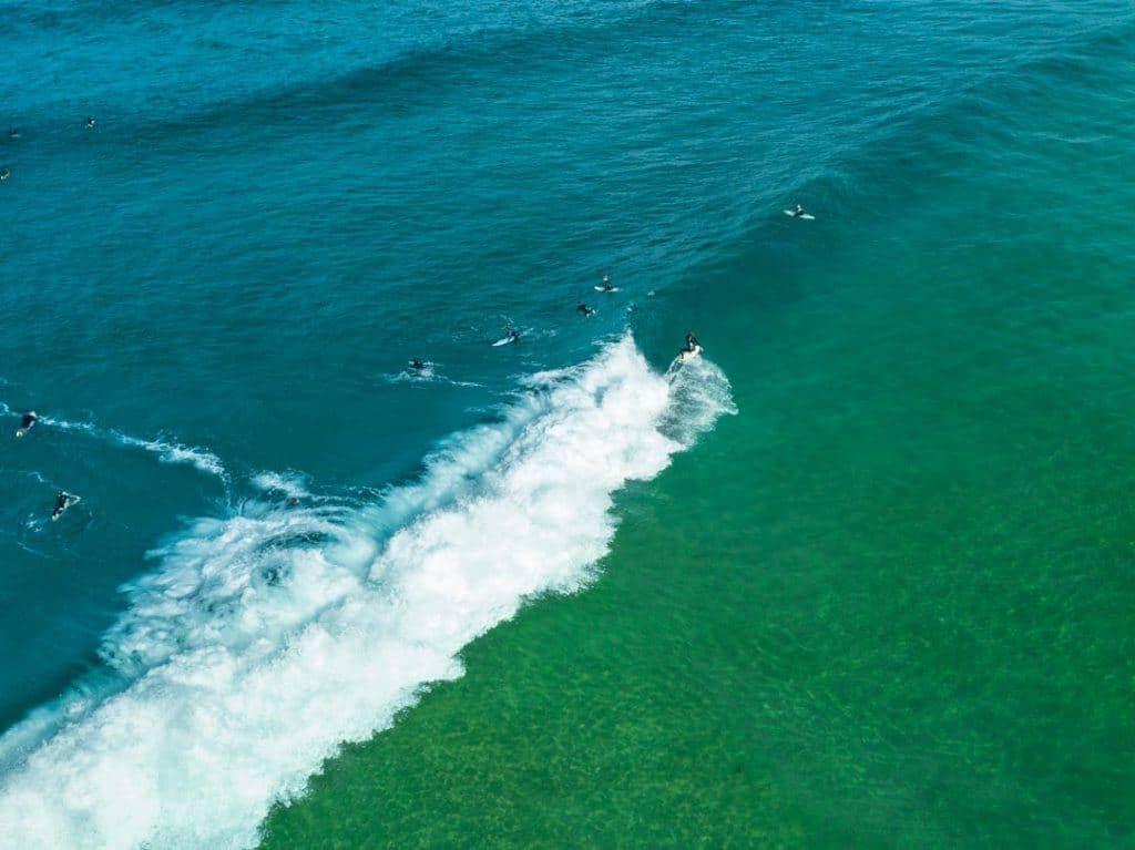 Surfing Winter Sydney