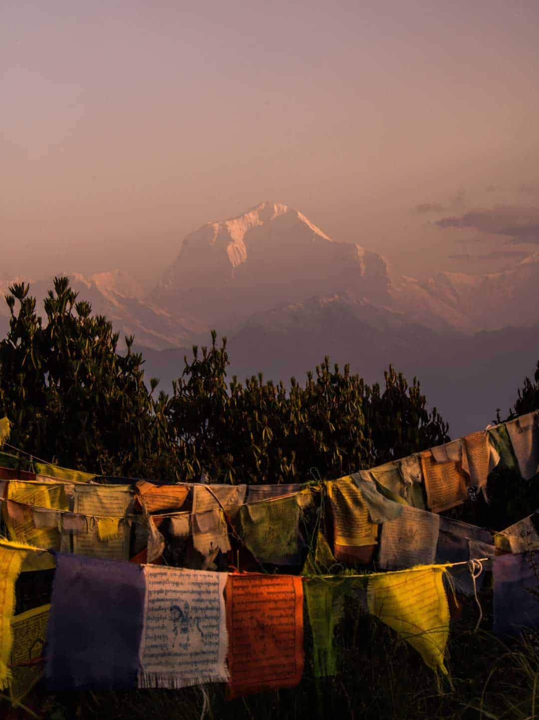 Dhaulagiri Light
