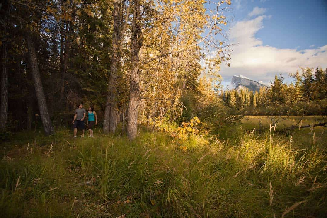 Best Banff Hikes Fenlands Trail