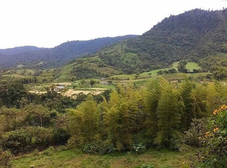 9 Unique Things to Do in Mindo, Ecuador (2020 Guide)