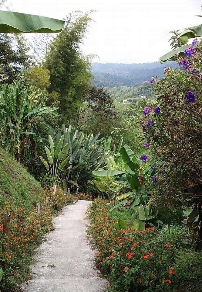 Trails, Casa Amarillo, Mindo, Ecuador