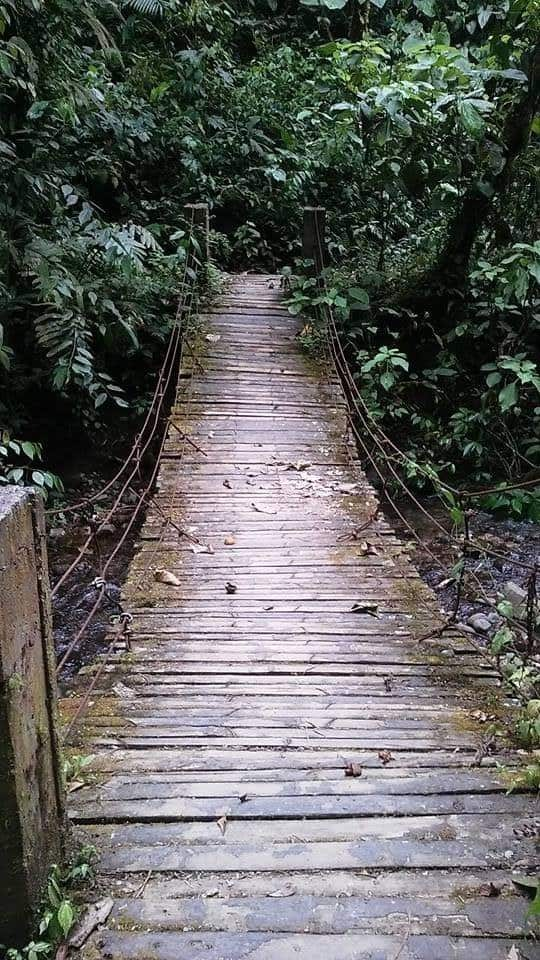 Wooden Trail, Things To Do In Mindo