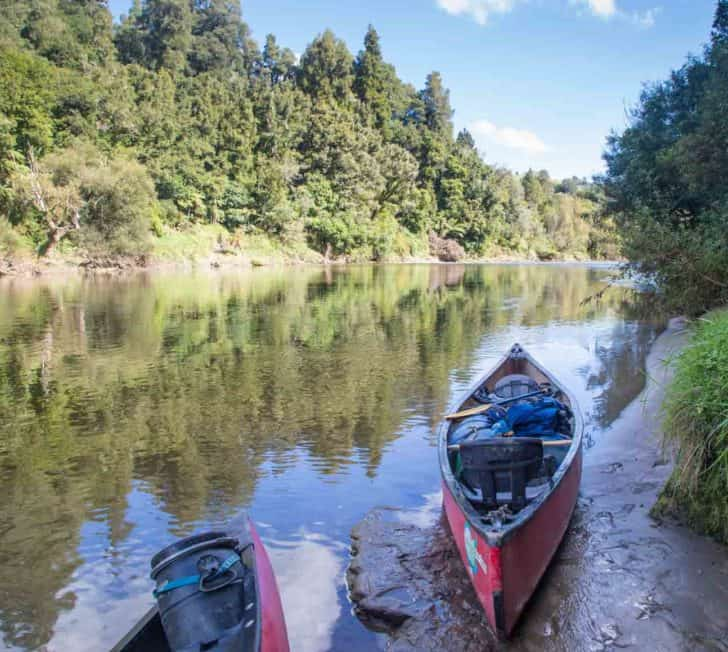 The Ultimate Guide to the Whanganui Journey in New Zealand