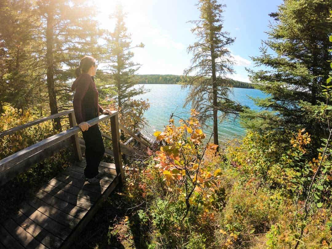 Clear Lake Views