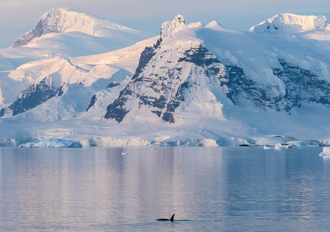 Big Mountains Travel To Antarctica