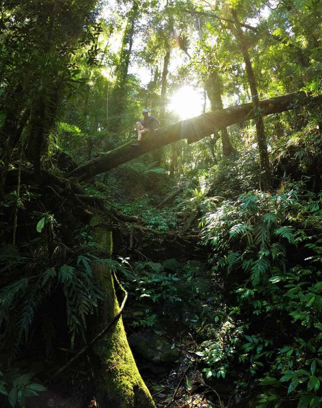 Adventure Camera Gopro Hero 7 Review