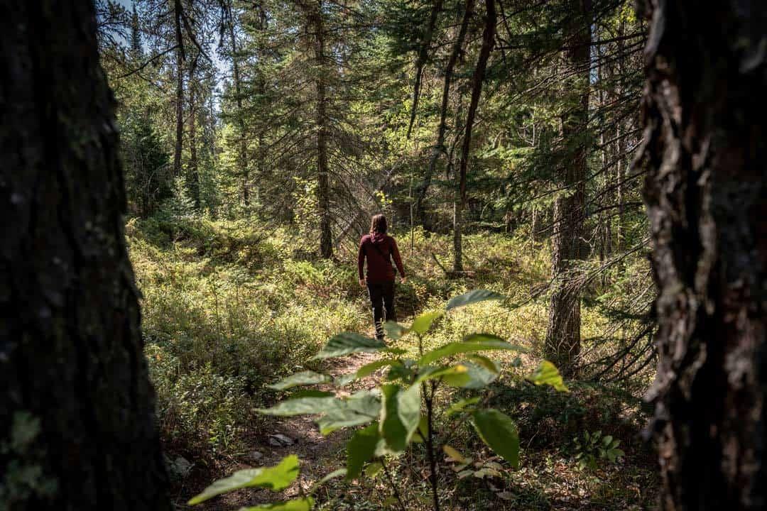 Falcon Lake Hiking