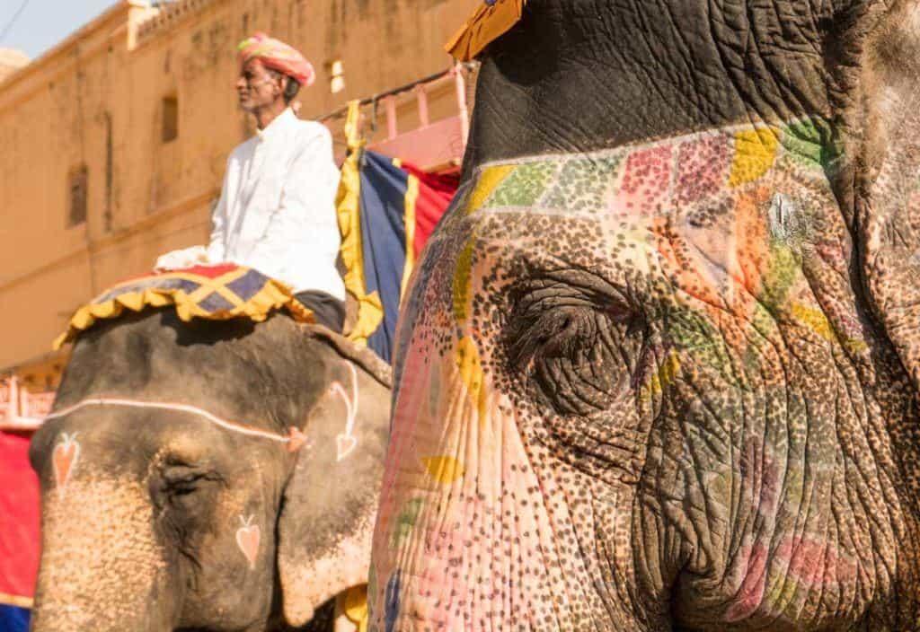 Painted Elephant Waits For Tourists On Elephant Ride India.