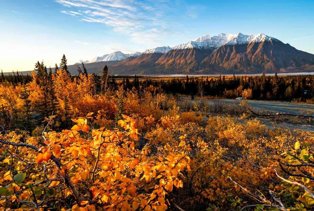 Yukon Road Trip Autumn Colours