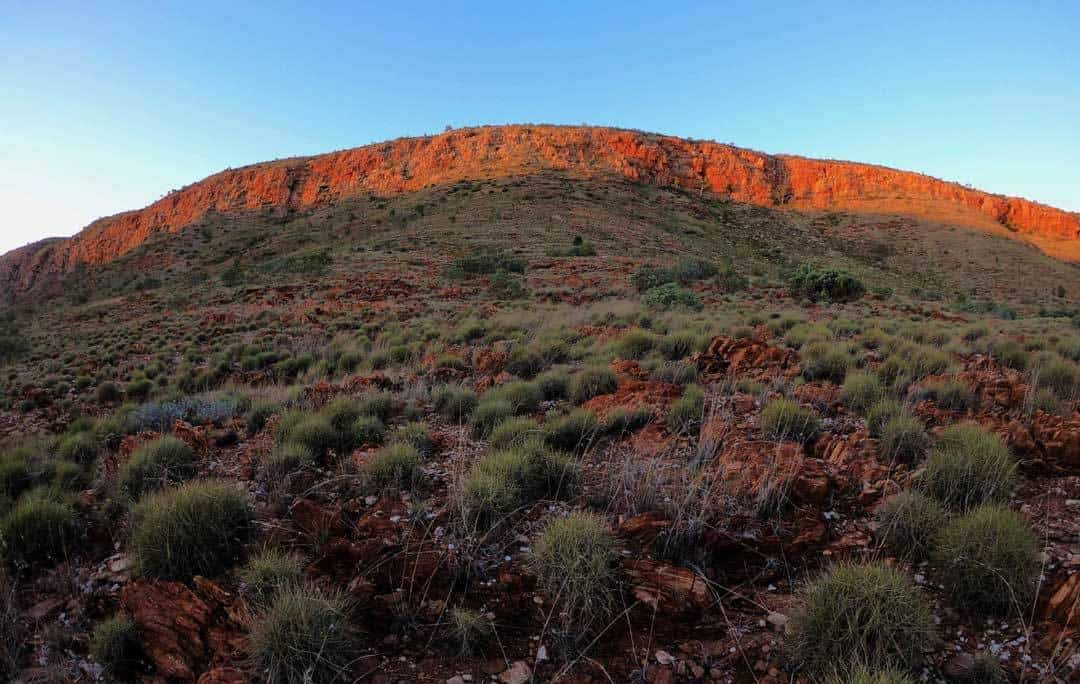 The West End Larapinta