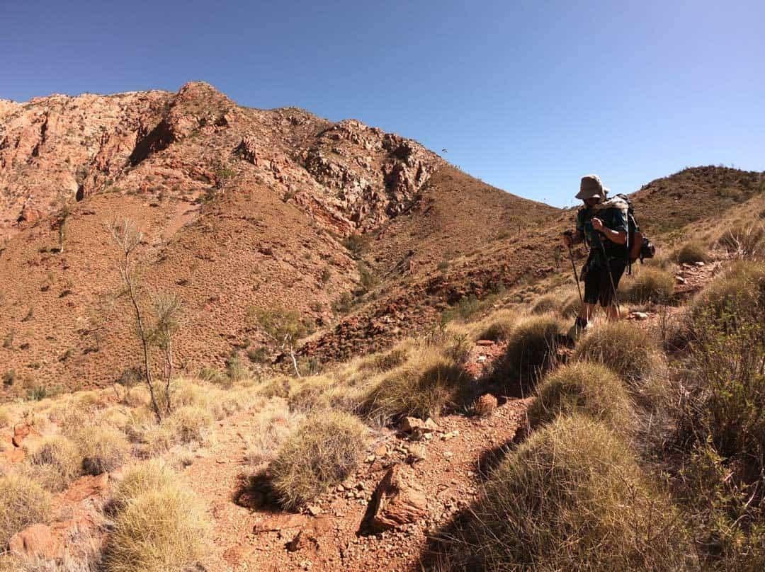 trekking larapinta trail