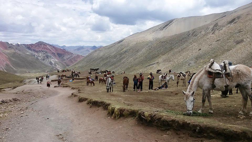 Rainbow Mountain, Horses