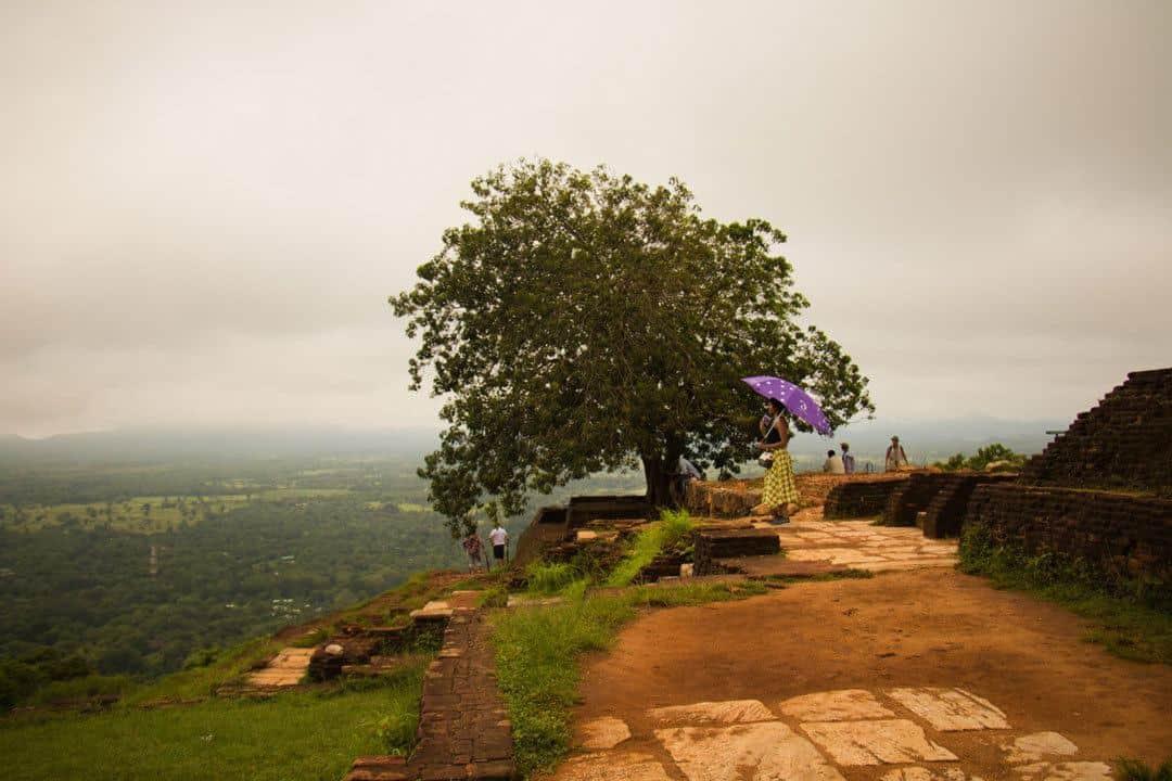 Umbrella Things To Do In Sri Lanka