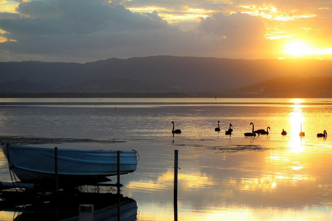 Lake Illawarra, New South Wales