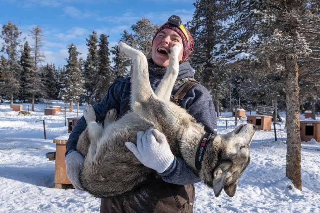 Staff Dogs Hugs