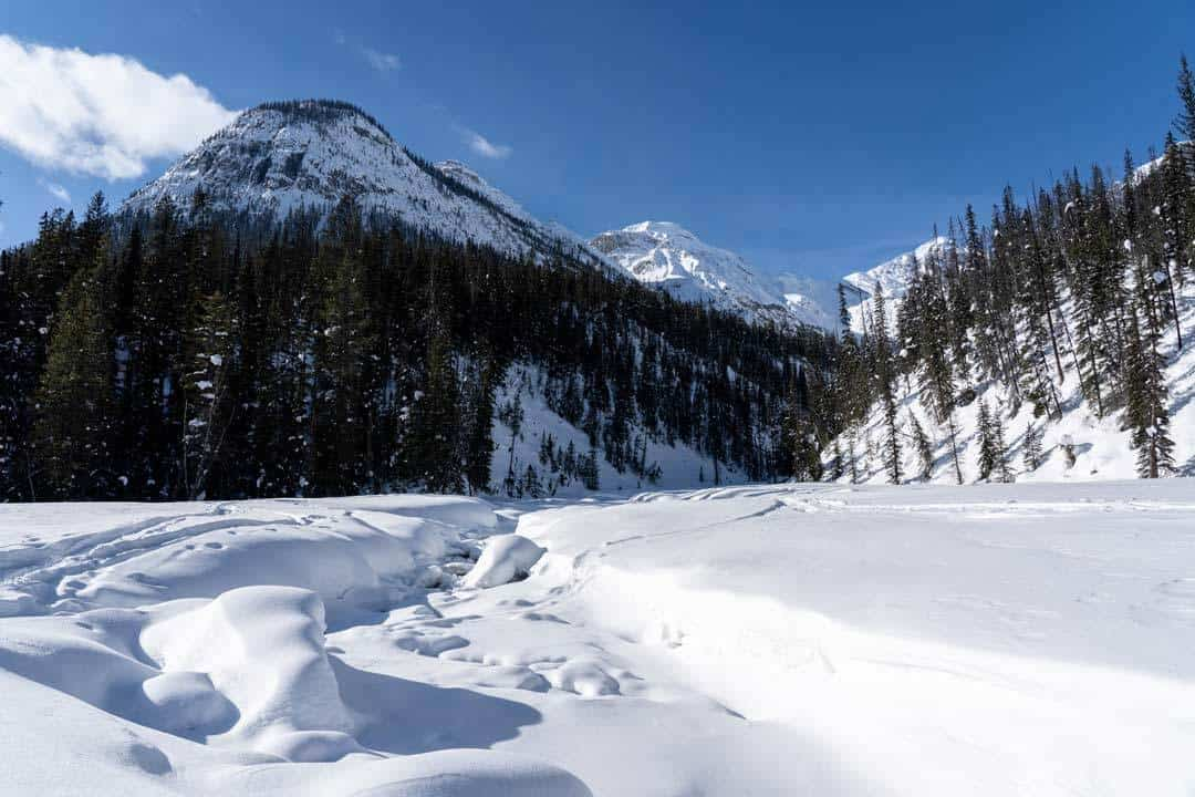 Yoho National Park In Winter
