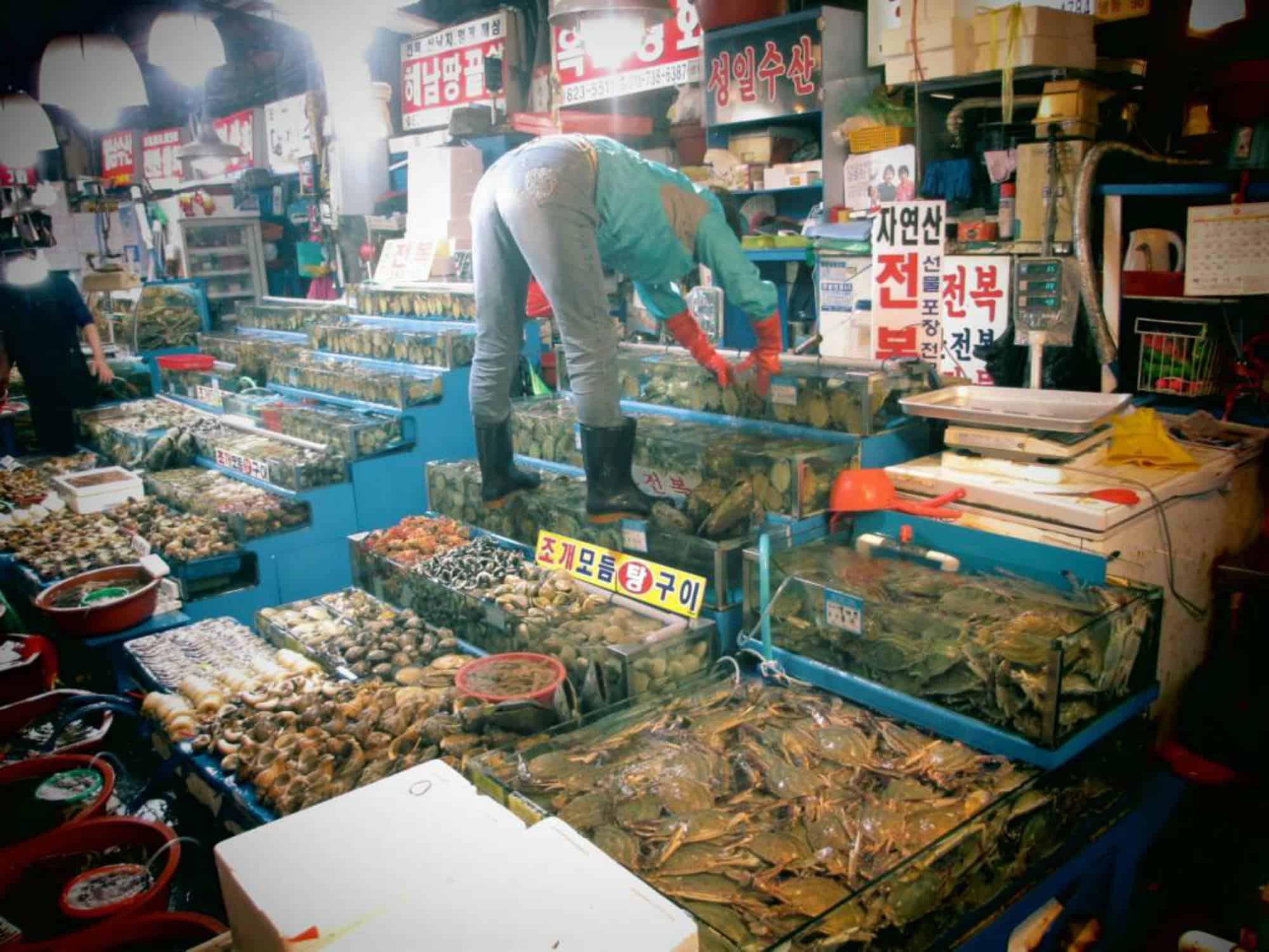 Norangyin Fish Marktet Seoul