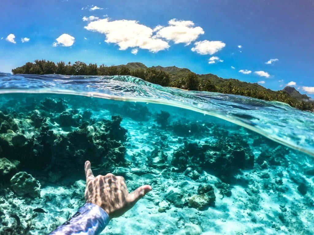 Rarotonga Swimming