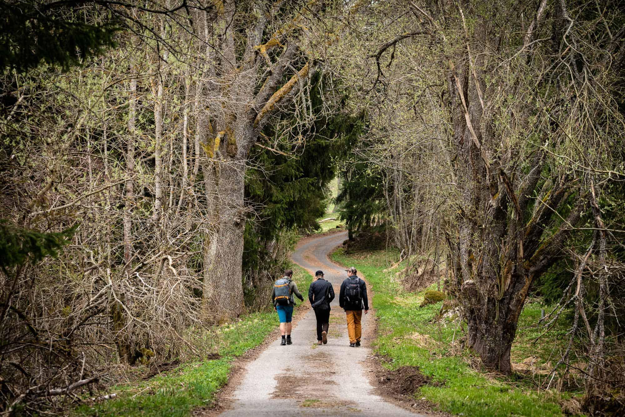 Golden Trail Czech Republic