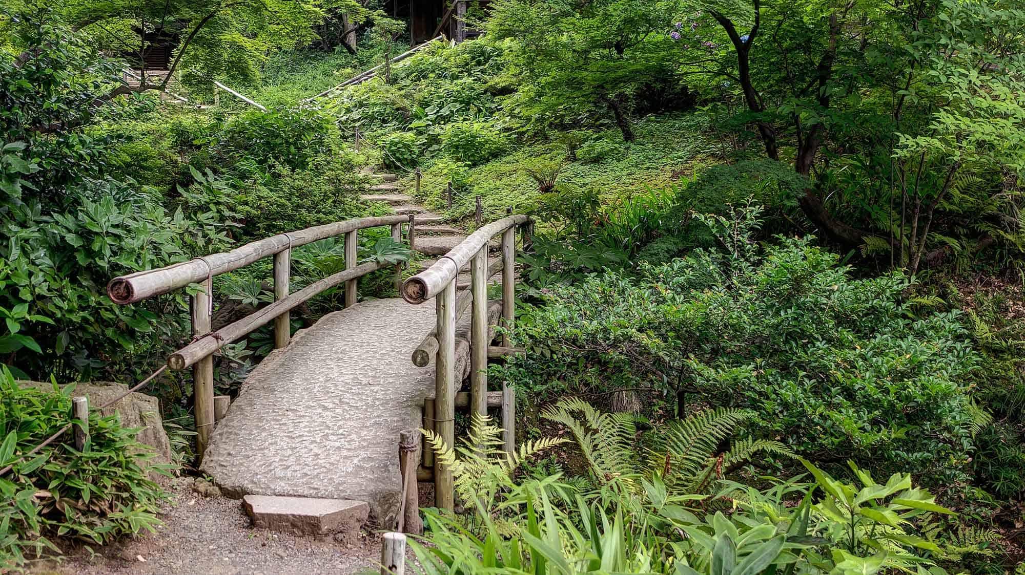 Sankei-En Gardens What To Do In Yokohama