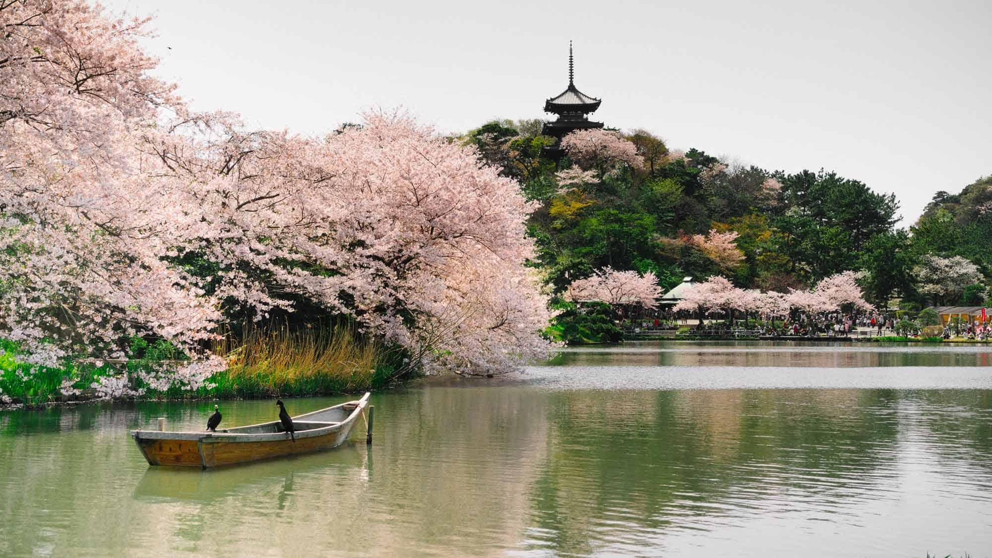 Sankeien Garden Things To Do In Yokohama