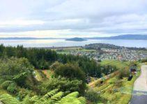 8 Amazing Things to Do in Rotorua, New Zealand
