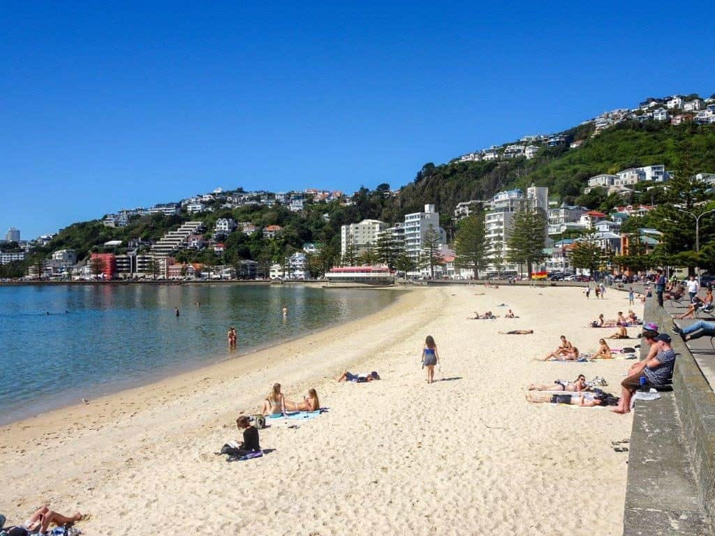 Things To do in Wellington, New Zealand Relax Along The Bay