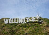 22 Cool Things to Do in Wellington, New Zealand (2021 Edition)