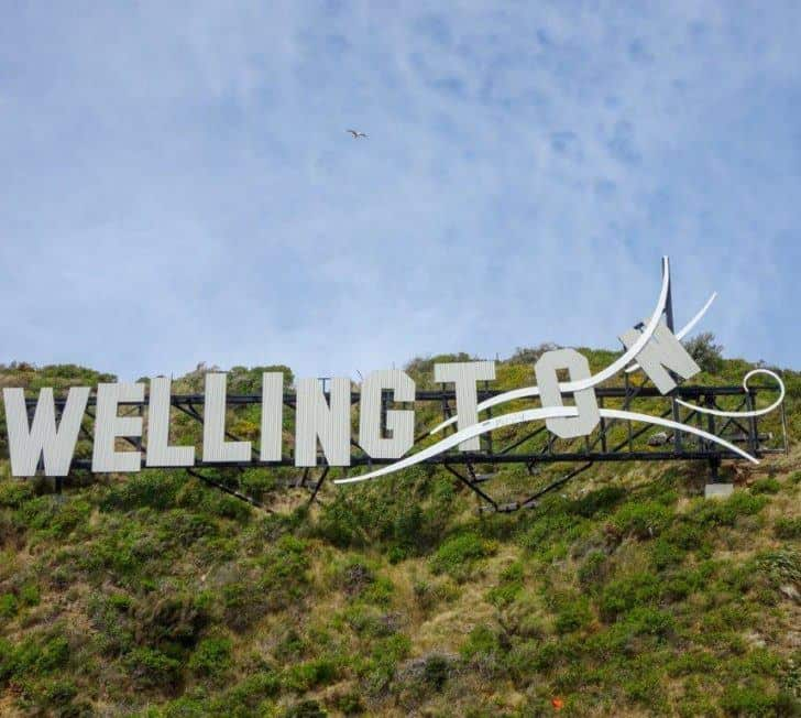 23 Cool Things to Do in Wellington, New Zealand (2020 Edition)