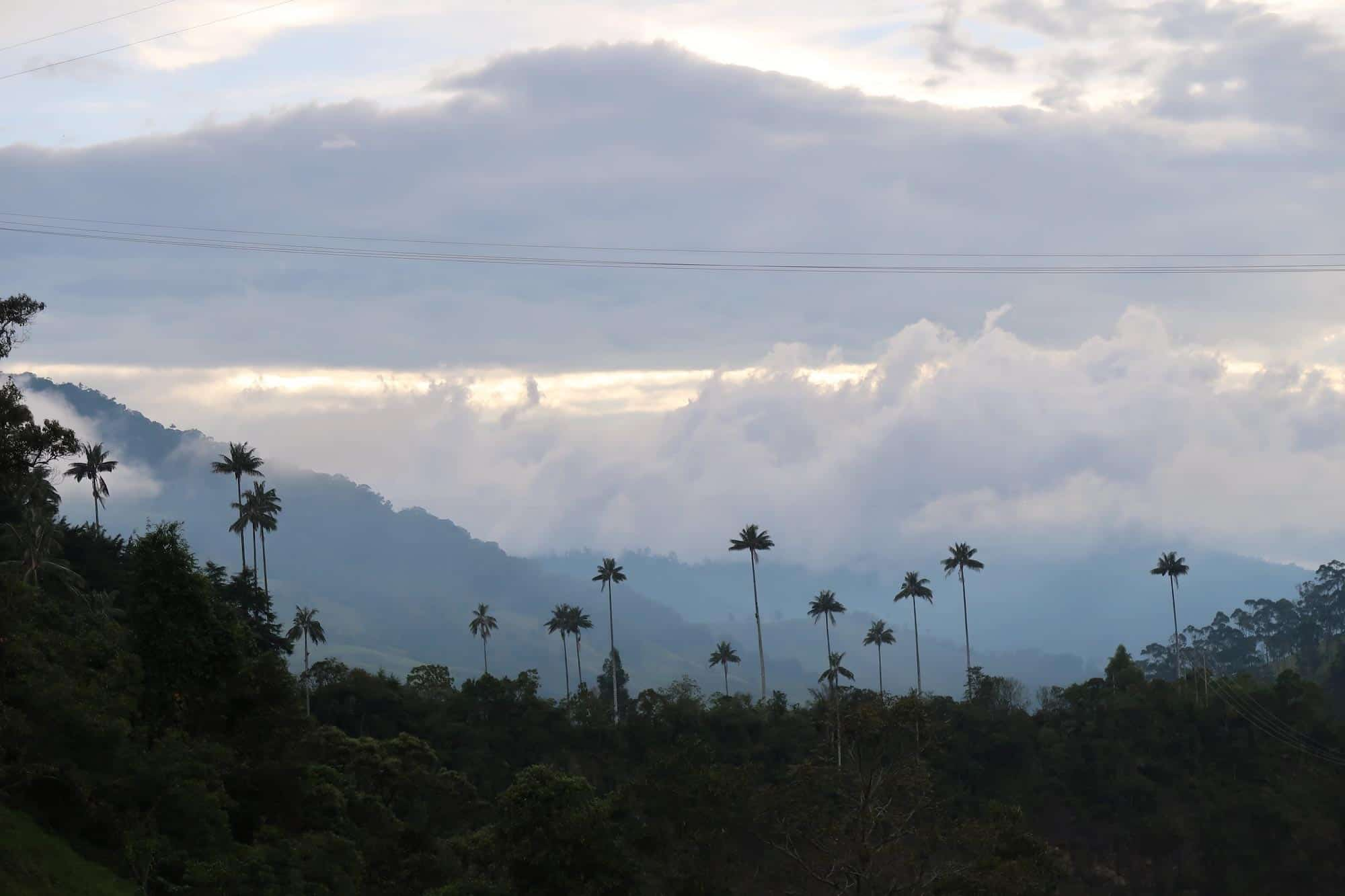 Colombia Coffee Region